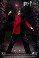 Harry Potter Tri-Wizard Tournament 1/8 Collectible Action Figure