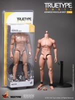 Advanced Muscular Body Truetype Basic for Sixth Scale Figures