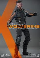 Hugh Jackman As Wolverine The X-Men Days of Future Past Sixth Scale Collectible Figure
