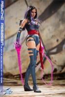 Psychic Assassin Sixth Scale Collector Figure